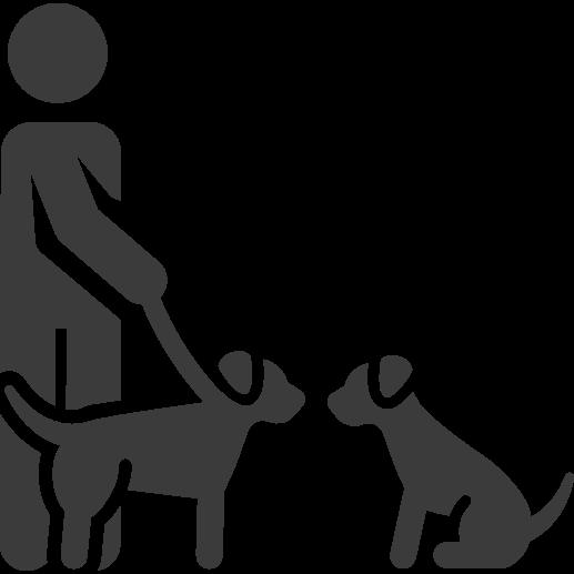 Alma de perros - Educación canina